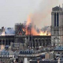 Illustration : Sauvons Notre-Dame de Paris